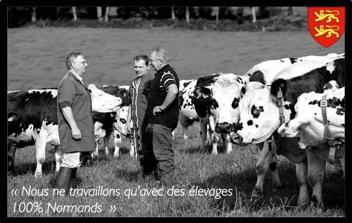 Notre boeuf : Made in Normandy
